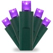 50 Purple Christmas Lights, LED Mini