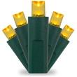 50 Gold Christmas Lights, LED Mini