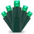 50 Green Christmas Lights, LED Mini