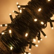 50 Warm White Outdoor LED Christmas Tree Lights, Mini 5MM