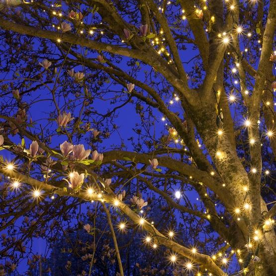 tree led lights xmas garden christmas happy lime lighting holidays
