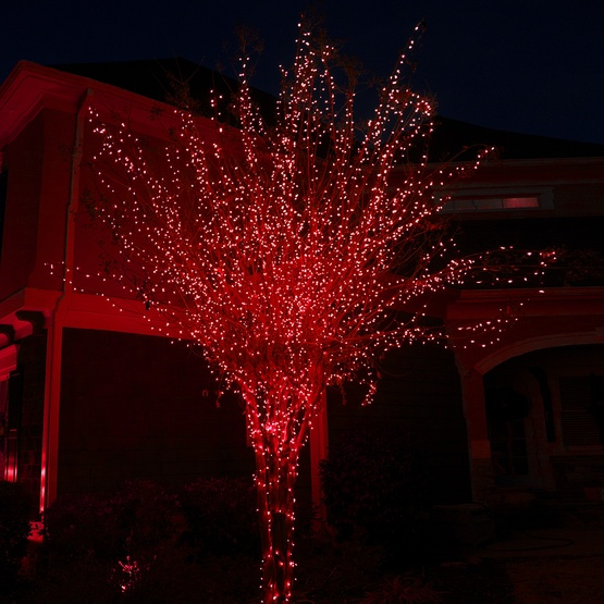 50 Red Outdoor LED Christmas Tree Lights, Mini 5MM