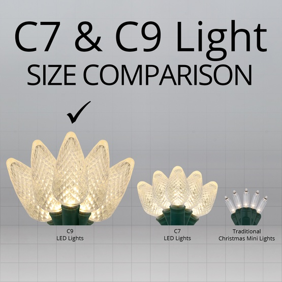 "25 C9 Warm White LED Christmas Lights, 8"" Spacing"