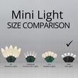 """70 5mm Cool White LED Christmas Lights, 4"""" Spacing, Black Wire"""