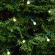 "70 G12 Warm White LED String Lights, 4"" Spacing"