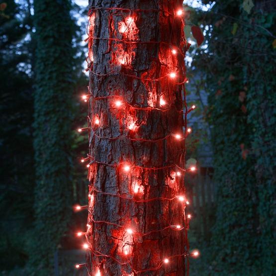 LED Net Lights - 5mm 20