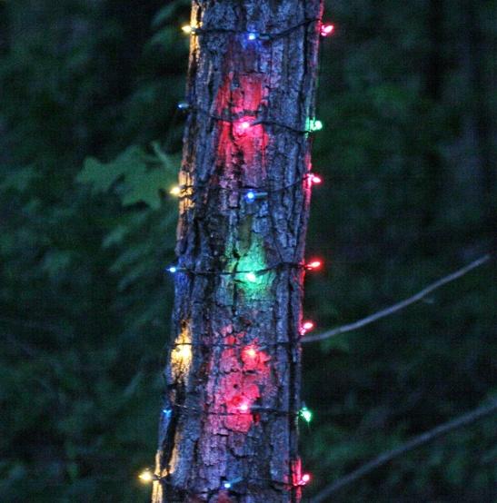 Net Lights 6 W X 12 H Trunk Wrap